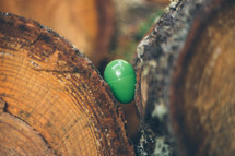Easter egg hidden between two logs