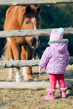 toddler girl watching a horse through a fence