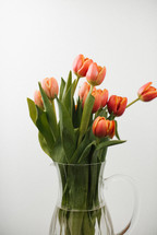 a bouquet of spring tulips