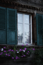 teal blue shutters and flowers in a window box