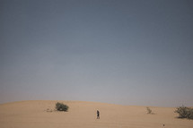person walking through a desert