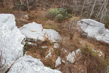 Rocks and boulders on the side of a hill with trees.