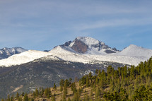 snow capped mountains and evergreen forest