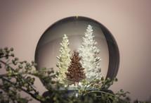 snow globe with Christmas trees