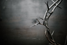 crown of thorns on a dark wood background