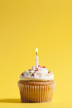 cupcake against a yellow background