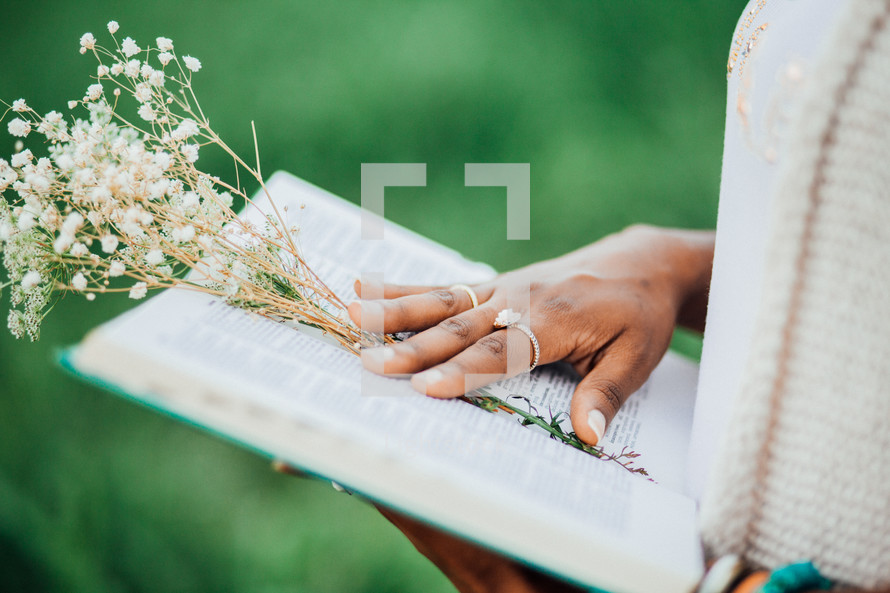flowers on the pages of a book