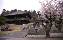 Asian house on hillside with stone pillars and pink blossom tree on side.