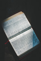 sunlight on the pages of a Bible