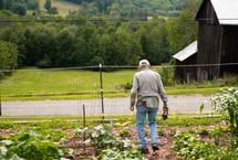 a man tending his garden