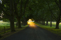 the glow of sunlight on a rural gravel road
