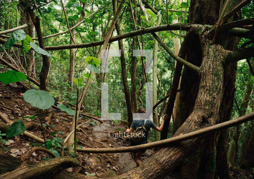 woman hiking through the jungles