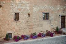 flowers along a sidewalk in Italy