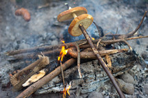 cooking over a fire