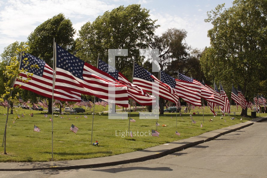 American flags lining a street