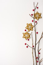 red berries, berries, sticks, background, border, ginger snap, star, cookie