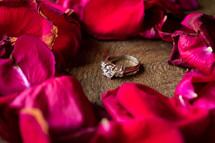 diamond ring and rose petals