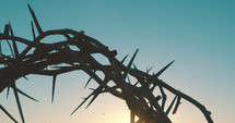crown of thorns against a sky at sunrise