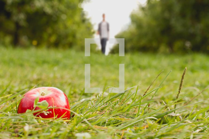 A man walking toward an apple lying on the grass