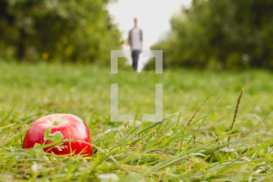 A man walking toward an apple lying on the grass