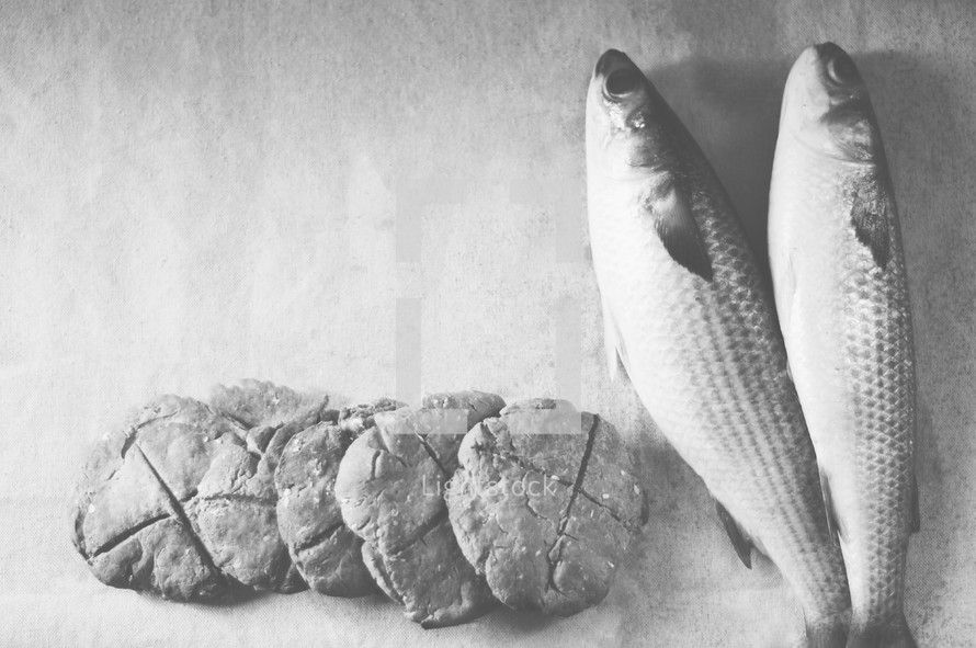 bread and fish