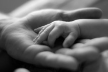 newborn hand in father's hand