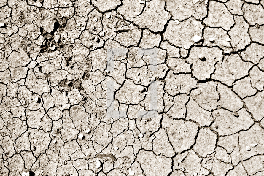 cracked parched earth