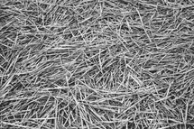 Closeup of straw