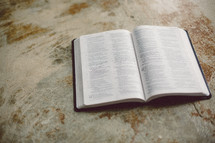 Open Bible on a concrete floor.