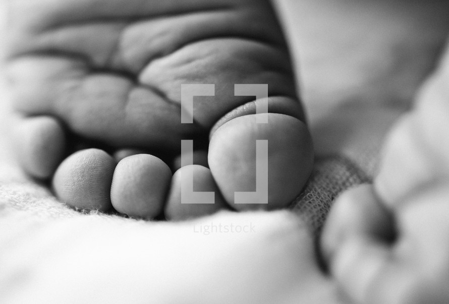 A closeup of the back of a baby's foot