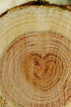 heart ring on a tree