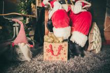 presents at Santa's feet