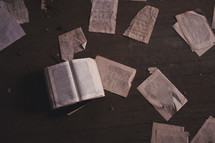torn out pages of a book on a floor