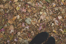 feet standing in fall leaves