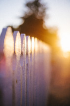 White picket fence at sunset.