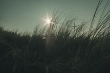 sunburst over tall grass in a field and a cross