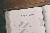 Bible opened to The Psalms