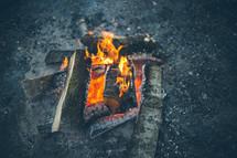 Burning log fire.