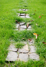 over grown grass on a stone pathway
