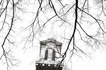 steeple through branches