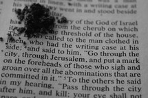 "ashes on the pages of a Bible with scripture for Ash Wednesday - ""and said to him, go through the city, through Jerusalem, and put a mark on the foreheads of those who sign and groan over abominations that are committed in it"" Ezekiel 9:4"
