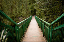 wooden walking trail and footbridge in a forest