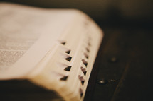 edge of pages of a Bible