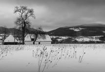 winter scene with a barn