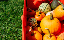 pumpkins in a red wagon