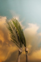 Palm branches raised high in the cloudy sky for Palm Sunday