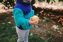 toddler girl holding an apple