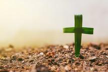palm cross in dirt