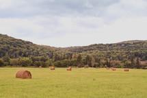 hay bales in an open field