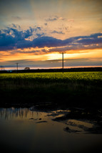 pond and power lines under a sunset